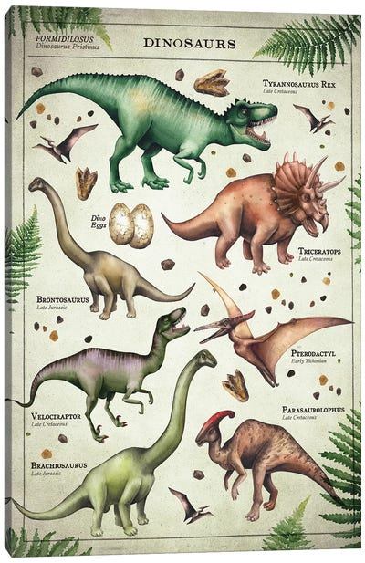 Dinosaur Chart Canvas Art Print