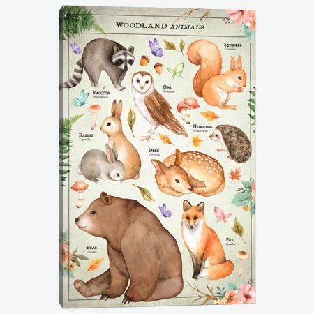 Woodland Chart Canvas Print #IDR107} by Ink & Drop Canvas Art Print