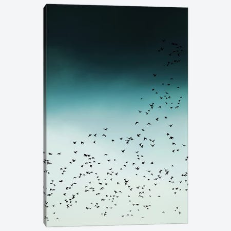 Birds In Flight Canvas Print #IDR1} by Ink & Drop Canvas Wall Art