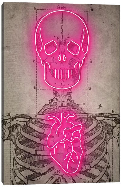 Neon Skull Diagram Canvas Art Print