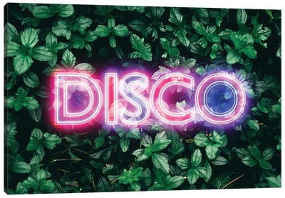 Disco Plants Canvas Art Print
