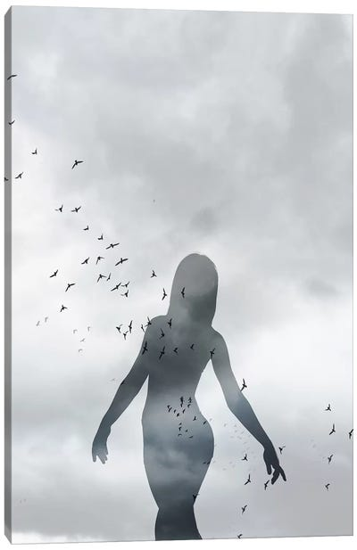 Girl And Birds Canvas Art Print