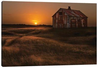 September Sun Canvas Art Print