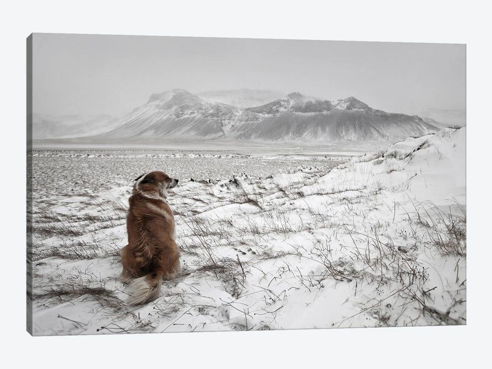 Snowstorm by Bragi Ingibergsson 1-piece Canvas Wall Art