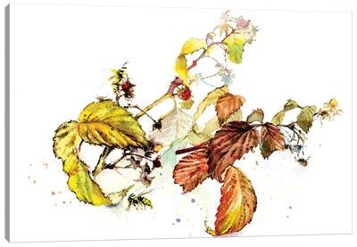Raspberry Sprigs Canvas Art Print