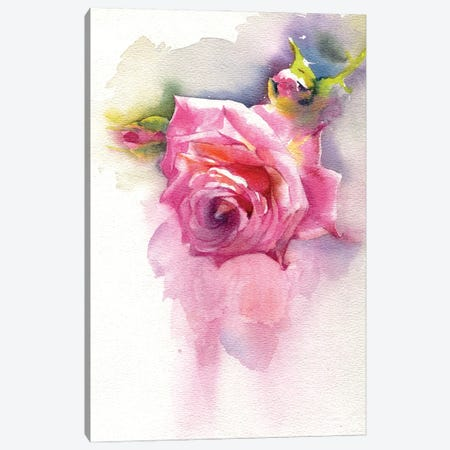Rose Canvas Print #IGN114} by Marina Ignatova Canvas Art Print