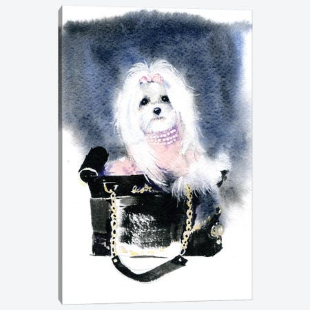 Dog II Canvas Print #IGN13} by Marina Ignatova Canvas Wall Art