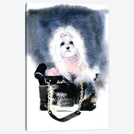 Dog II Canvas Print #IGN13} by Marina Ignatova Canvas Wall Art