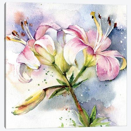 Pink Lilies Canvas Print #IGN143} by Marina Ignatova Art Print