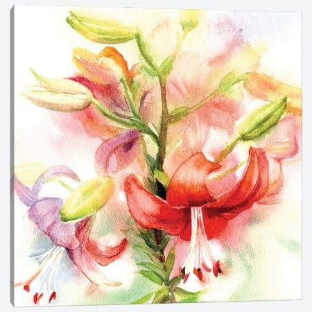 Red Lilies Canvas Print #IGN144} by Marina Ignatova Canvas Art