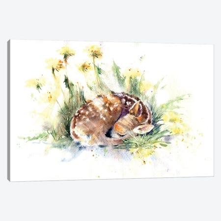 Fawn In Dandelions Canvas Print #IGN14} by Marina Ignatova Canvas Print