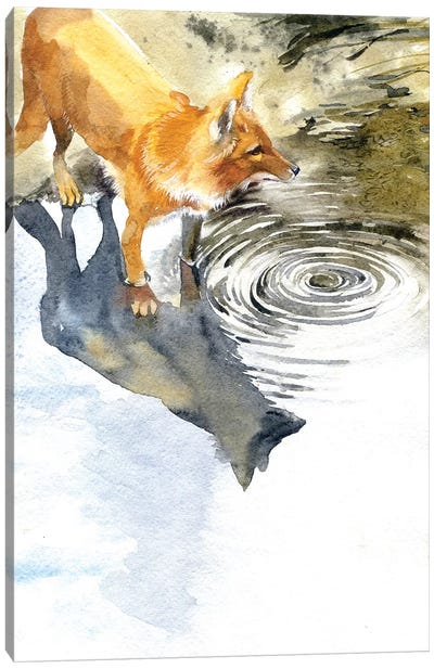 Fox By The River Canvas Art Print