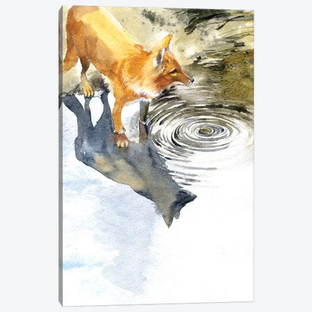 Fox By The River Canvas Print #IGN17} by Marina Ignatova Canvas Art Print