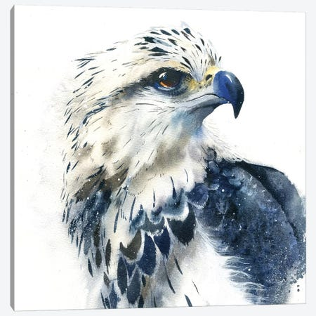 Hawk Canvas Print #IGN19} by Marina Ignatova Canvas Art