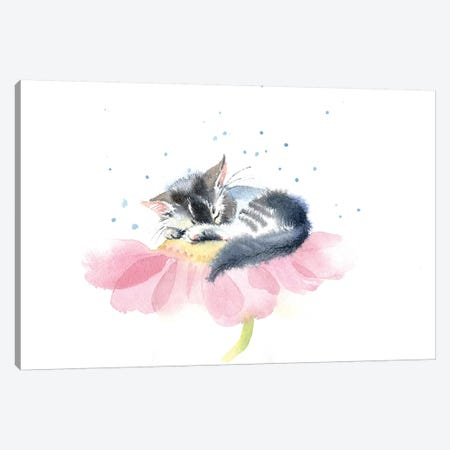 Kitten On A Flower IV Canvas Print #IGN20} by Marina Ignatova Canvas Print