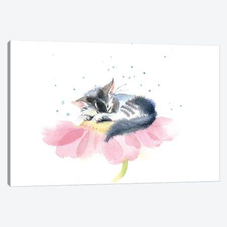 Kitten On A Flower IV Canvas Print #IGN20} by Marina Ignatova Canvas Print