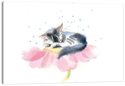 Kitten On A Flower IV Canvas Art Print