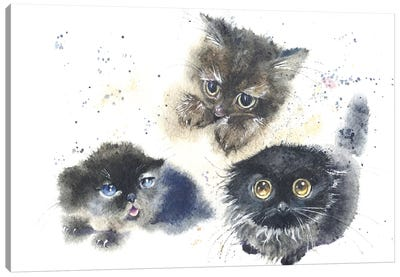 Kittens Canvas Art Print