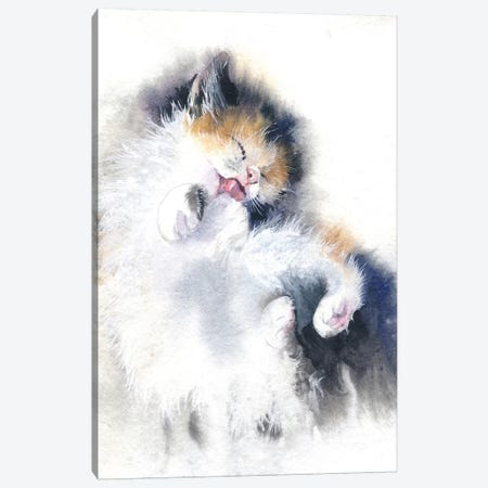 Kitty Bath Canvas Print #IGN22} by Marina Ignatova Canvas Print