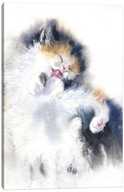 Kitty Bath Canvas Art Print