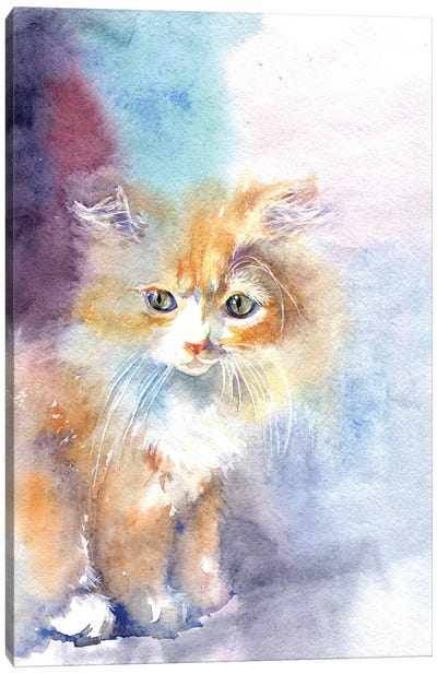 Kitty In The Light Canvas Art Print