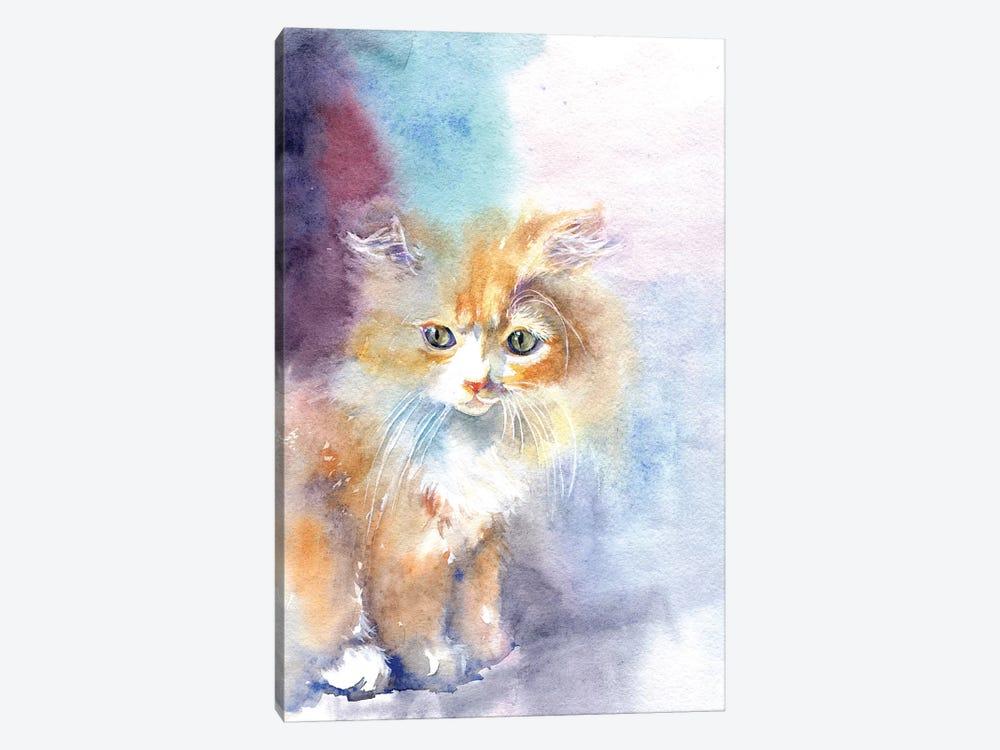 Kitty In The Light by Marina Ignatova 1-piece Canvas Print