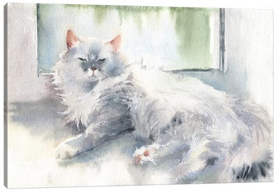 Liza The Cat Canvas Art Print