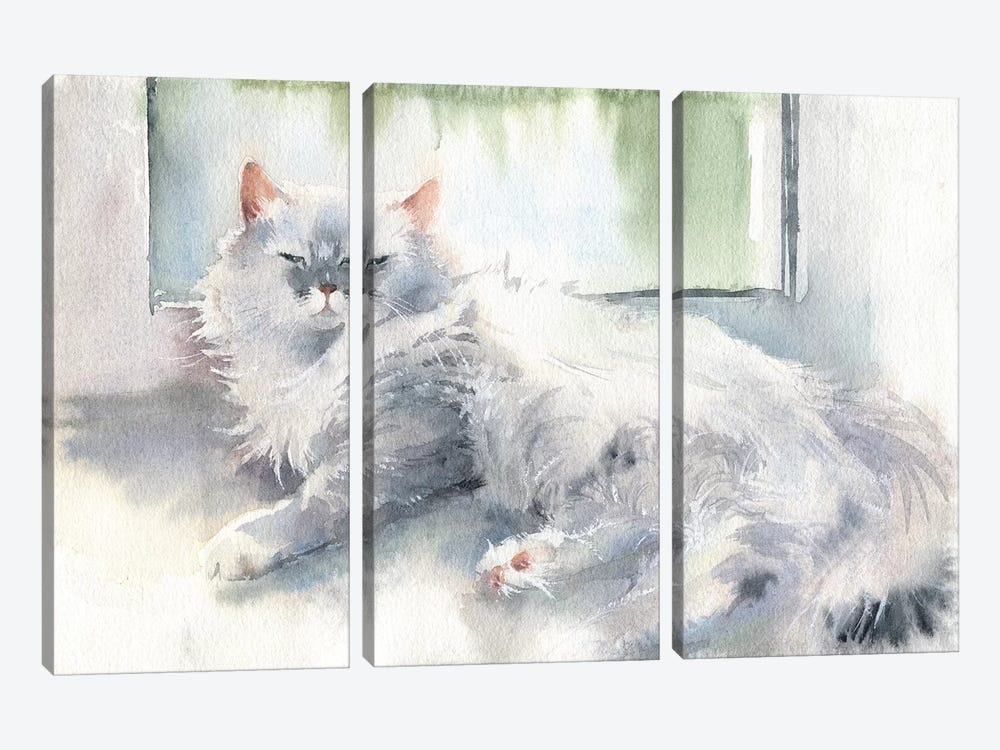 Liza The Cat 3-piece Canvas Wall Art