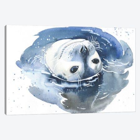 Pusa Canvas Print #IGN30} by Marina Ignatova Canvas Wall Art