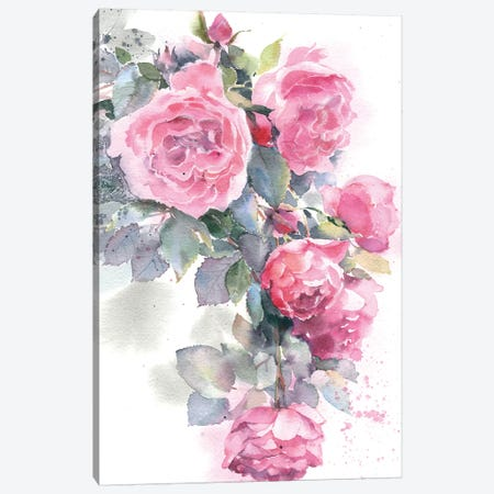 Rose Bush Canvas Print #IGN31} by Marina Ignatova Canvas Artwork