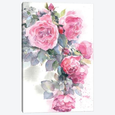 Rose Bush Canvas Print #IGN31} by Marina Ignatova Canvas Artwork