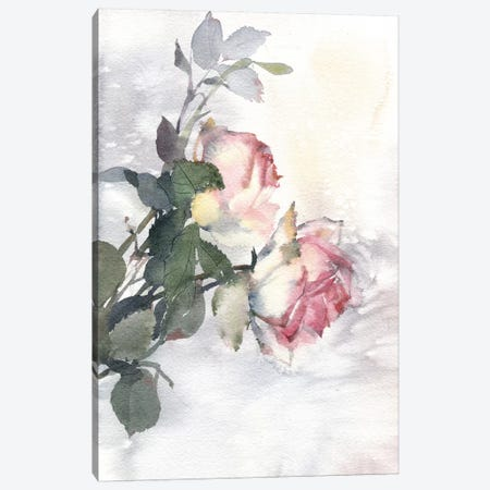 Roses Canvas Print #IGN32} by Marina Ignatova Canvas Artwork