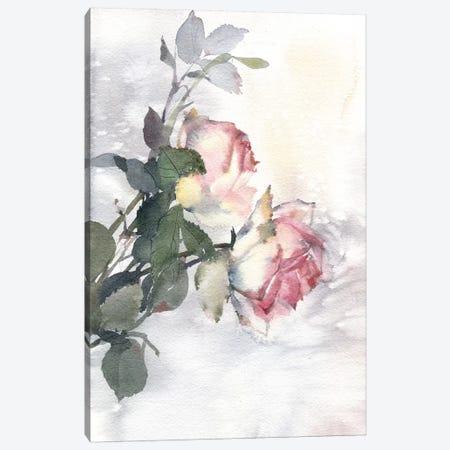 Roses Canvas Print #IGN32} by Marina Ignatova Canvas Artwork