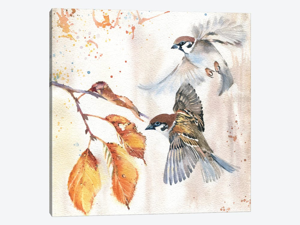 Sparrows III by Marina Ignatova 1-piece Canvas Artwork