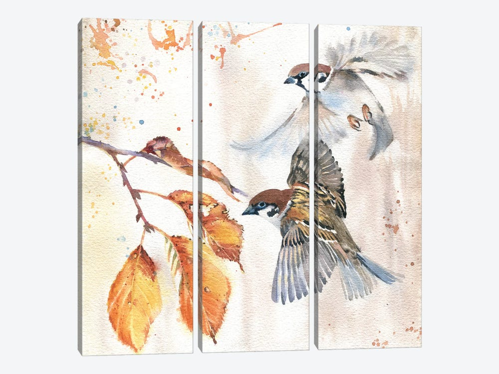 Sparrows III by Marina Ignatova 3-piece Canvas Wall Art