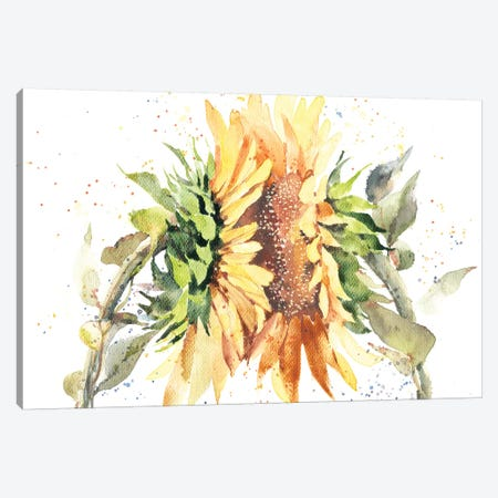 Sunflowers 3-Piece Canvas #IGN34} by Marina Ignatova Canvas Print