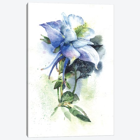 Aquilegia Canvas Print #IGN3} by Marina Ignatova Canvas Art