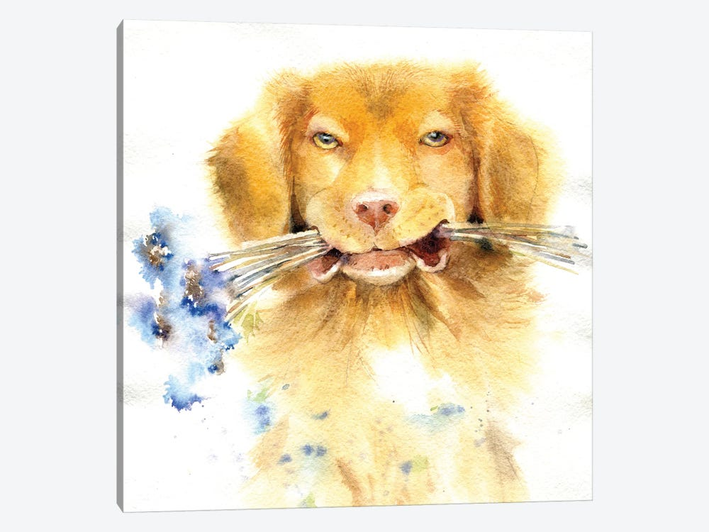 Retriever With Bouquet by Marina Ignatova 1-piece Canvas Print
