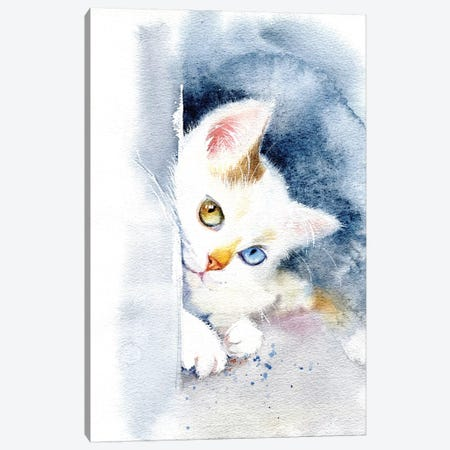 Kitten With Colorful Eyes Canvas Print #IGN49} by Marina Ignatova Canvas Print