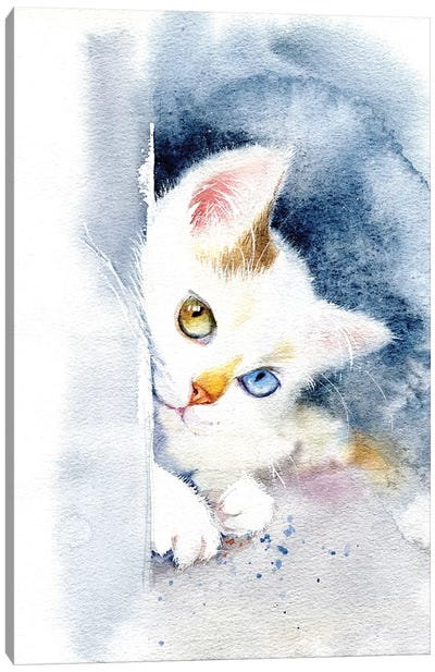 Kitten With Colorful Eyes Canvas Art Print