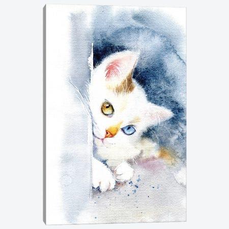 Kitten With Colorful Eyes Canvas Print #IGN49} by Marina Ignatova Canvas Print