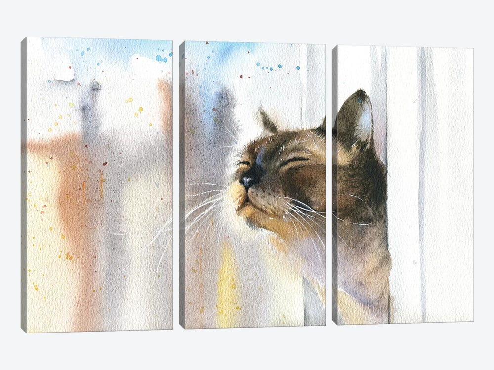 Cat Outside The Window 3-piece Canvas Art Print
