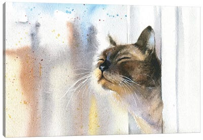 Cat Outside The Window Canvas Art Print