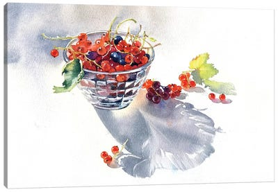 Currants Canvas Art Print