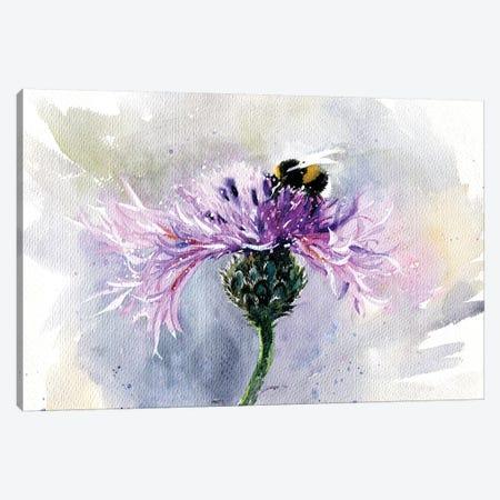 Bumblebee On A Flower Canvas Print #IGN54} by Marina Ignatova Canvas Print