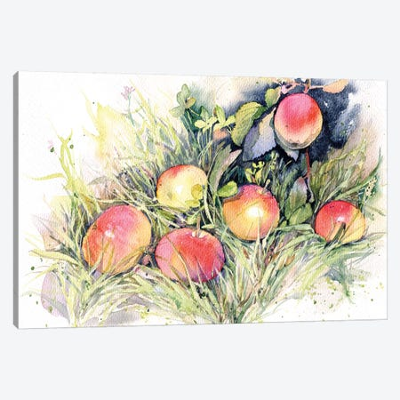 Apples On The Grass Canvas Print #IGN55} by Marina Ignatova Art Print