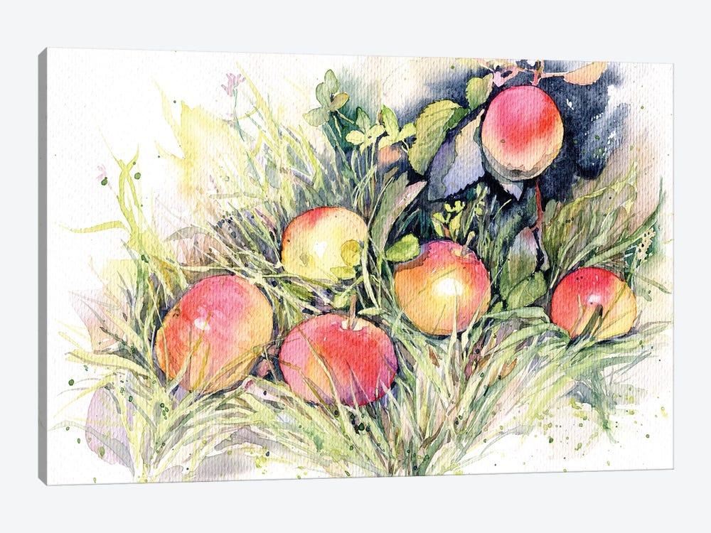 Apples On The Grass by Marina Ignatova 1-piece Canvas Art