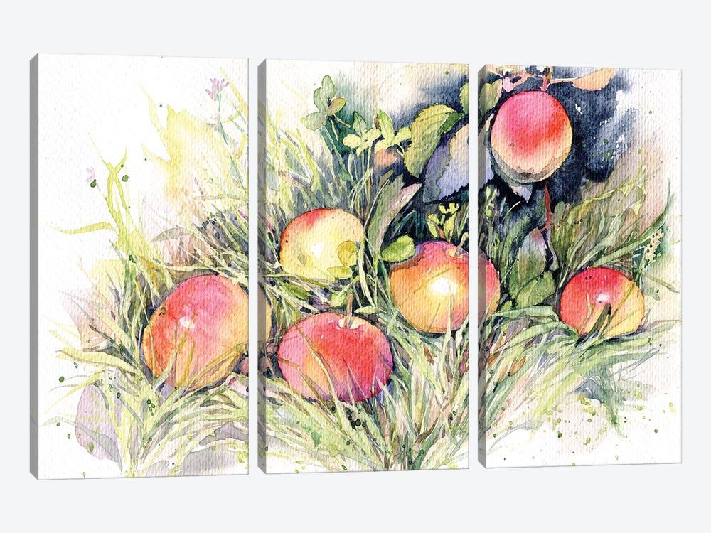 Apples On The Grass by Marina Ignatova 3-piece Canvas Art