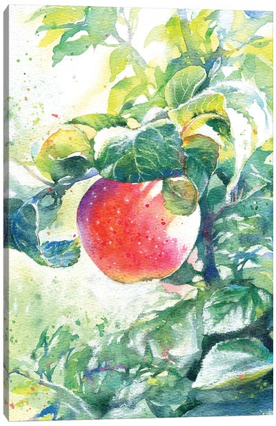 The Apple Canvas Art Print