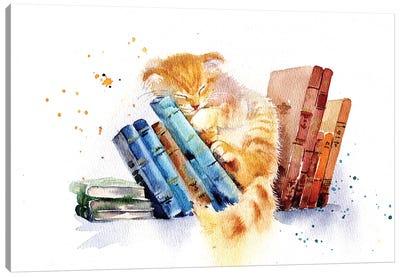 Sleeping Cat Canvas Art Print
